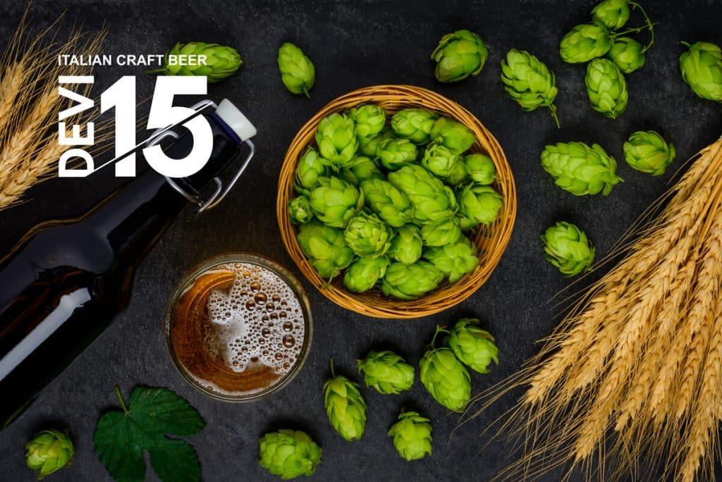 Devi-15—ingredienti-ricette-birra